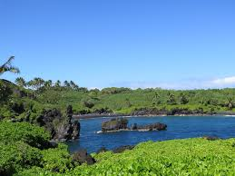 where is the black sand beach from florida to down under a beach for every type of traveller