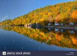 hiilside of autumn colored trees reflected in lake st nora near