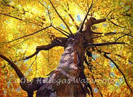 autumn tree watercolor painting print cathy hillegas