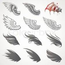 set of twelve vector wings the collection includes a simple form