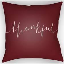 Decorative Pillows At Christmas Tree Shop throw pillows u0026 decorative pillows you u0027ll love