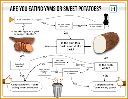 Yam Thanksgiving Recipes What The Hell Am I Eating Yams Or Sweet Potatoes Here U0027s How To