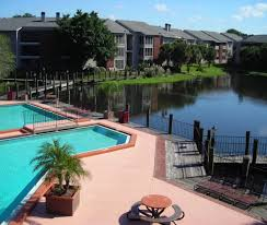 100 best apartments for rent in carrollwood fl from 680