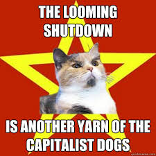 Shutdown Meme - the looming shutdown cat meme cat planet cat planet