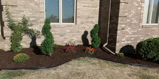 Lawn And Landscape by About Amore Lawn Care Amore Lawn And Landscaping
