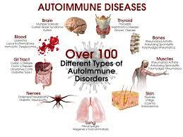 best medicine for inflammation 5 steps to heal autoimmune disease drjockers com