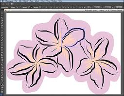 exporting a vector sketch from adobe illustrator draw sketching