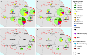 Brazil Map States by Types And Rates Of Forest Disturbance In Brazilian Legal Amazon
