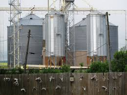 Grain Silo Homes by Missouri The Walkover States