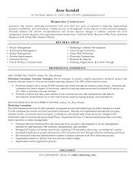 Business Consultant Resume Sample by Sales Manager Resume Sample Marketing