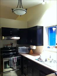 Modernizing Oak Kitchen Cabinets by Kitchen Gel Stain Oak Cabinets Painting Cabinets Black Painting