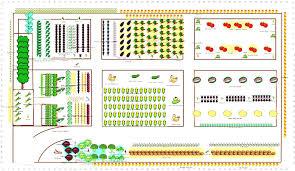 flower garden plans for beginners beginner vegetable garden the beginner vegetable garden film to