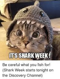 Shark Week Meme - 25 best memes about pepee pepee memes