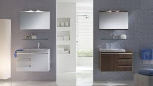 Bathroom Cabinet Design Ideas Spacious Bathroom Storage Toilet And Glass Design Ideas