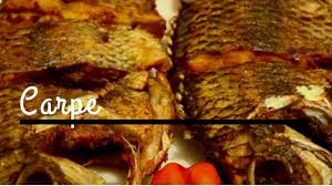 comment cuisiner une carpe recette de tilapia carpe