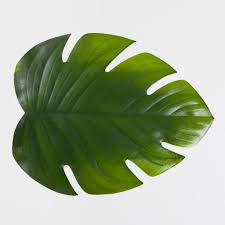 channel a tropical vibe with these palm leaf place mats 17