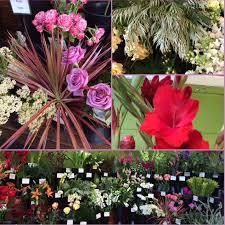 Flowers Direct Mother U0027s Day Portland Flower Shop Guidebook U2014 Crib Design House