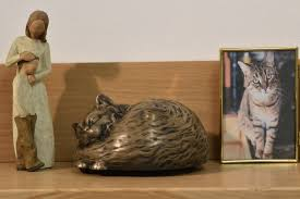 cat caskets my shadow cat casket