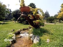 giardini rocciosi in ombra il giardino roccioso un angolo d ombra e quiete a torino