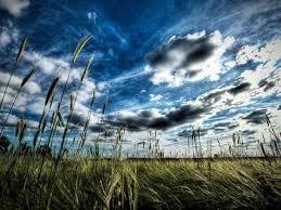 imagenes impresionantes de paisajes naturales los mejores fondos e impresionantes de paisajes naturales y de alta
