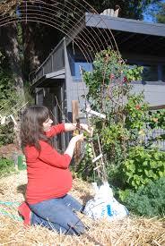 backyard orchard culture full hearts farm