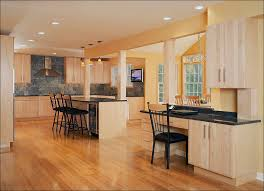 european kitchen cabinets lovely modern kitchen cabinets and with