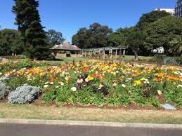 Botanic Garden Sydney Walk At The Botanical Gardens In Sydney Picture Of The