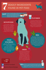 7 deadly ingredients legally allowed in pet foods simple wag
