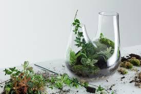 tom dixon u0027s new glass terrariums cool hunting