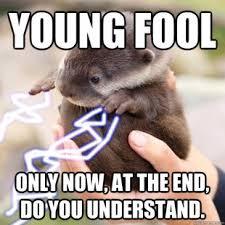 Sea Otter Meme - emperor otter meme quickmeme otter memes pinterest otter