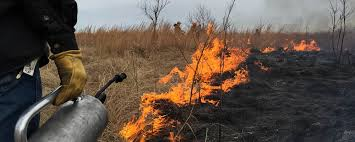 Wildfire Tools by Tools Of The Trade Basic Requirements For Prescribed Burns