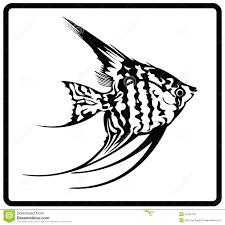 angelfish stock vector image 57407123