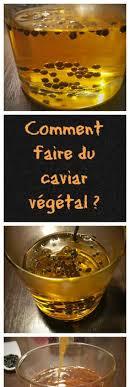 cuisine mol ulaire recette facile gastronomie moléculaire moléculaire gastronomie