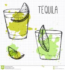 cocktail sketch set of two cocktail shots with lime segments sketch and