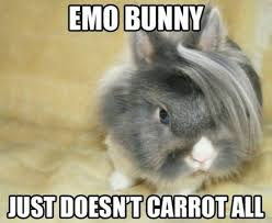 Funny Rabbit Memes - emo bunny just doesn t carrot all funny rabbit meme picture