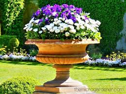 ten tips for creating beautiful gardens the micro gardener