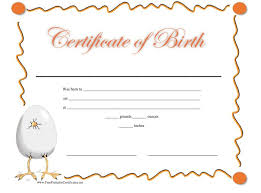 15 birth certificate templates word u0026 pdf template lab
