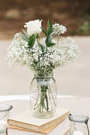 baby s breath flower 53 lovely baby s breath flower pictures images wallpaper