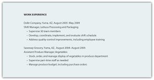 Work Experience Resume Format For It by