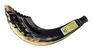 rams horn trumpet rams horn shofar moroccan style color with crown