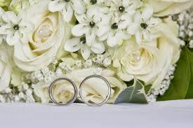 free images petal wedding flora rings floristry flowering