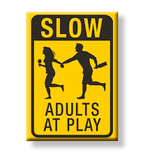 adults at play magnet