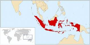 indonesia tropical fish ornamental fish wholesale indonesia