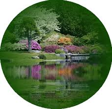 imagenes gif imagenes con movimiento imágenes con frases en movimiento imágenes bellas 2