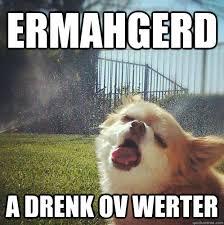 Thirsty Meme - thirsty dog memes quickmeme