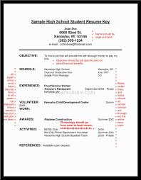 Good Resume Examples For Highschool Students by Examples Of Resumes Free Microsoft Word Doc Professional Job