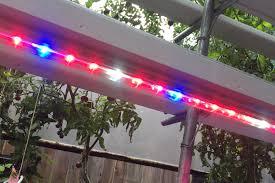 fcc compliant led lights best led grow light grozinegrozine