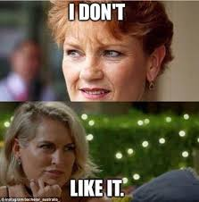 The Bachelor Australia Memes - the bachelor fans poke fun at janey s tick shaped eyebrows in social