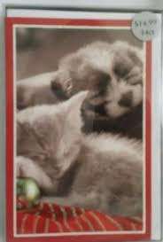new with box american greetings christmas holiday 14 cards