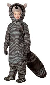 Raccoon Halloween Costumes Raccoon Costume Kids Costumes